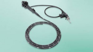 Large Animal Videoendoscopes